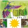 Logo Andrea Basile y Graciela Barbieri, Precandidatas a Concejal y Consejera Escolar en Avellaneda