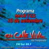 Logo Programa del 10 de setiembre