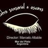 Logo Entrevista a Marcelo Altable, director del teatro sensorial