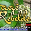 Logo Tereré Rebelde Programa del 30 de Noviembre