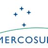 """Logo Juan Manuel Karg sobre Cumbre Mendoza: """"Es un Mercosur debilitado, sólo apéndice del TLC con la UE"""""""
