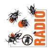 Logo Bichos de Campo 05-10-19