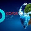 Logo Andrés Simón desde la Conferencia de la ONU sobre el Cambio Climático