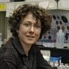 Logo Entrevista a Andea Gamarnik, creadora de los tests locales para medir anticuerpos de COVID-19