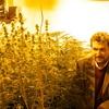 """Logo Darío Andrinolo: """"El Cannabis medicinal tiene un efecto importante en los pacientes"""""""
