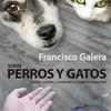 Logo Francisco Galera - Sobre Perros y Gatos