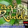 Logo Tereré Rebelde Programa del 14 de Diciembre