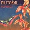 Logo Pastoral - Humanos - 1975