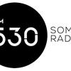 Logo Entrevista | Desde la org Madre Tierra analizan la cuarentena en los barrios populares