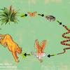 """Logo """"Redes tróficas, seguridad alimentaria y la sociedad del riesgo global"""""""