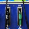 """Logo Gabriel Bornoroni: """"Las petroleras hablan de aumentar precios de combustibles entre el 5% o 6%"""""""