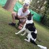 Logo Entrevista a JAVIER BORACCHIA - Psicólogo Social / Educador Canino - El lenguaje del perro.