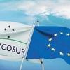Logo ACUERDO UNION EUROPEA (UE) - MERCOSUR