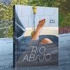 Logo NORA BUICH presenta RIO ABAJO, preventa del nuevo libro