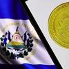 Logo Walter Fagoaga habla con Ricardo Césari sobre el Bitcoin en El Salvador.