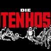 Logo DTH - Entrevista Completa