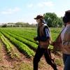 """Logo Parques agroecológicos en Moreno: """"Queremos producción en condiciones dignas"""""""