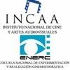 Logo CINE ARGENTINO EN PELIGRO. Nora Lafont en conversación con el director de cine Luis Puenzo