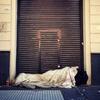 Logo Ola de frío: el drama de miles de porteños en situación de calle