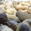 Logo ¿Cómo se cultiva el maní? Entrevista a Gustavo Rinaudo, agrónomo especializado en maní de AGD