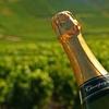 Logo El Champagne, una bebida que se convirtió en el vino más famoso del mundo