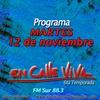 Logo Programa del 12 de noviembre