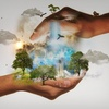 Logo columna de sustentabilidad - ¿como ser un consumidor responsable?