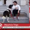 Logo Nota | La Primera Mañana - Mauricio Trigo | Abogado de Dolores del caso Rubio