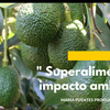 """Logo """" Superalimentos y el impacto ambiental """""""