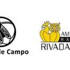 Logo Bichos de Campo-  16-11-2019