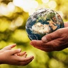 Logo Ley de Educación Ambiental: Fortalezas y desafíos de una ley imprescindible