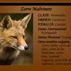 Logo Zorro Malvinero - Como Perros y Gatos - Nº 214 - 02-04-2017