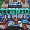 Logo Entrevista a Estefanía Pozzo e infrome de Catalina Caramuti previo al debate al Aborto