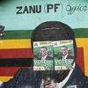 Logo Elecciones en Zimbabue