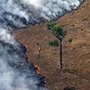 Logo #AmazonasArde / Un daño gravisimo para todo el planeta y la Humanidad