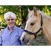 """Logo """"Cómo tratar a los caballos"""""""