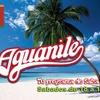 Logo AGUANILE TU PROGRAMA DE SALSA - DOMINDO2 DE OCTUBRE