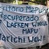 Logo Cohiue de la Lof Lafken Winkul Mapu y el territorio ancestral