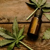 "Logo ""Buscamos dar un marco legal a las personas que usan cannabis con fines terapéuticos"""