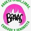 Logo BRAVAS: Socorristas en red en La Plata, celebran su primer año