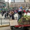 "Logo Cimar Gutierrez, ""Verdurazo"" en Plaza de Mayo.  #Verdurazo @uniondetrabajadoresdelatierra"