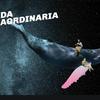 Logo La vida extraordinaria en el Teatro Cervantes. Por Marcelo Zlotogwiazda.