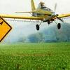 Logo Detectaron restos de agroquímicos en quince escuelas rurales de Tandil