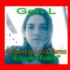 Logo Laura Sformo: Financiamiento de los hogares.