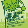 Logo Daniel Langren y 11 años de militar La Cannabis