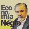 Logo Columna Economica Ing.. Miguel iPonce