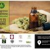 Logo Dr Marcelo Morante- Cannabis Medicinal