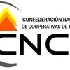 """Logo Informe: """"El cooperativismo de trabajo en Argentina"""" y entrevista a Federico Tonarelli (Bauen-FACTA)"""