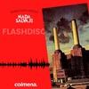 "Logo Flash Disc ""Animals"" de Pink Floyd"