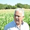 Logo Los precios de los productos hortícolas. El precio de la lechuga. Juan Perlo desde Córdoba